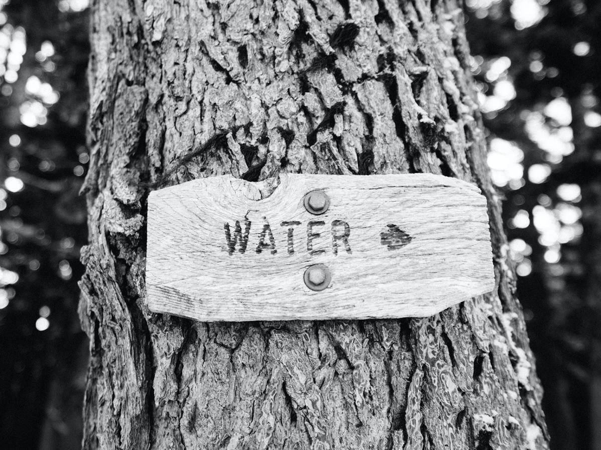 Sign on tree pointing to the water.
